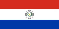 חוות דעת דין זר פרגוואי